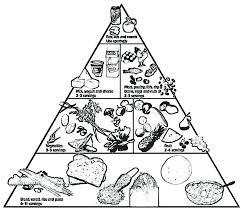 Food Pyramid For Kids Worksheet Free Printables Worksheet