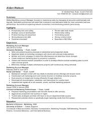 Account Manager Resume Objective Sample Professional Letter Formats