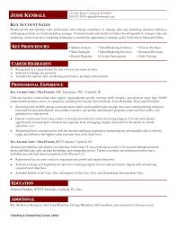sr s manager resume area senior s manager latin america resume samples area senior s manager latin america resume samples
