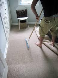 carpet rake. home maintenance: carpet rakes rake
