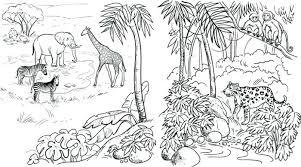 Safari Animal Coloring Pages Cspninfo