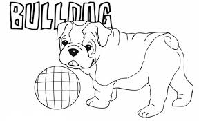 Small Picture Bulldog Puppy Coloring Pages Coloring Pages