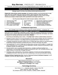 Resume Examples Product Manager Best Of Product Manager Resume Sample Monster In It Manager Resume Sample