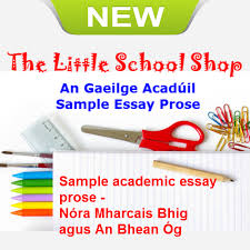 gaeilge acaduil sample essay prose ie description