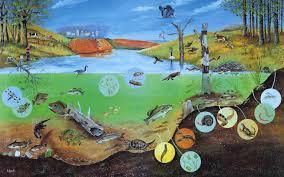 short essay for school students on our ecosystem 2012 linkdump nyholt