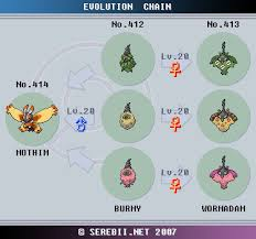 Burmy Evolution Chart