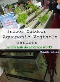 aquaponic gardening. aquaponic gardens for lazy gardeners gardening