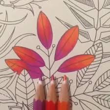 colouring coloring coloring books coloring tips pencil art secret gardens colored pencils book art draw