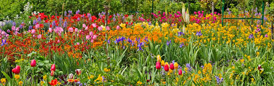 7 of the world s most beautiful botanical gardens