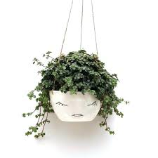 hanging wall planter plant pots hanging wall planters outdoor large garden pots ceramic planters patio plants