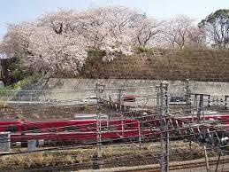 「神奈川県和田町」の画像検索結果