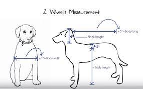 2 wheels measurement