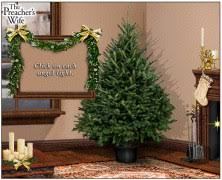 Classic Animated Christmas Cards Trivia Free Video Download