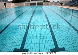 olympic swimming pool lanes. Perfect Olympic Swimming Pool With Lane Markings  Olympic Size For Olympic Swimming Pool Lanes