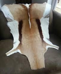 stunning springbok hide rug genuine skin pelt throw deer