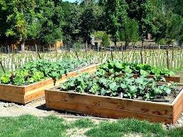 how to make a raised vegetable garden. Making A Vegetable Garden Bed Raised Beds For Great How To Make S