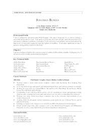 Examples Of Personal Resumes Profile Section Of Resume Examples