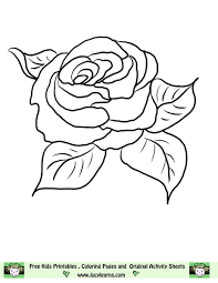 flower page printable coloring sheets rose coloring pages lucy learns free rose coloring picture