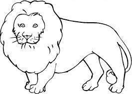 5 Extraordinary Jungle Animals Coloring Pages   ngbasic.com