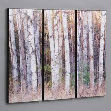wilson studios birch trees in the fall 3 piece framed photographic print set birch tree artwall  on autumn tree set of 3 framed wall art prints with wilson studios birch trees in the fall 3 piece framed photographic