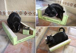 cat scratcher lounge. ScratchLounge2 Cat Scratcher Lounge