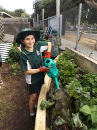Stephanie Alexander Kitchen Garden Program Stephanie Alexander Kitchen Garden Margaret River Primary School