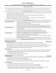 Sample Executive Resumes Elegant It Executive Resume Sample Free