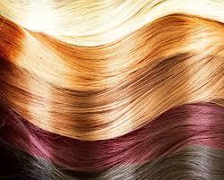 Basics Of Hair Color Levels Tones Wella Com