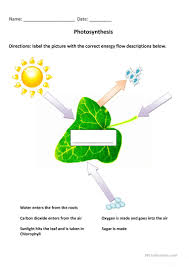 Photosynthesis Alphabet Chart English Esl Photosynthesis Worksheets Most Downloaded 2