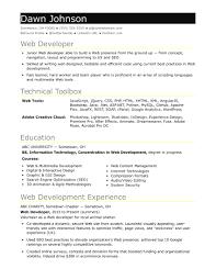 Java Profile Resume Resume Work Template