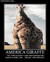 Giraffe Quotes Awesome Americagiraffe Pictures Photos And Images For Facebook Tumblr
