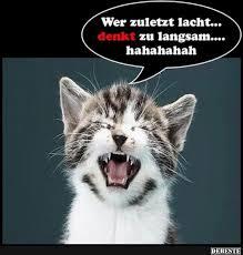 Wer Zuletzt Lacht Denkt Zu Langsam Lustige Bilder Sprüche