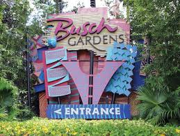 busch gardens workers feel the effects of seaworld s job cuts tampa bay business journal