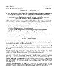 Creative Chief Officer Consumer Lending For Loan Officer Resume Sample .