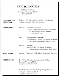 Classic Resume Example Fascinating Job Application Resume Template Resume First Time In First Job