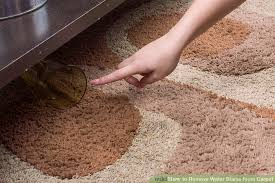 image titled remove water stains from carpet step 4