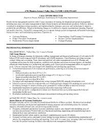Call Center Director Resume Sample