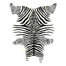 zebra hide rug source rugs south africa spotcard co