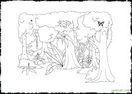 rainforest plants coloring pages here are tropical coloring pages images free printable coloring pages plants coloring