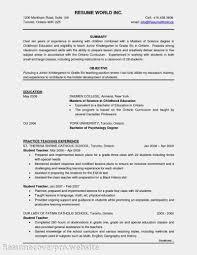 53 Sample Chronological Resume Templates Cv Template Will