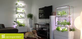 2018 green wall etusivu 1200 how to make easy hydroponic green wall or vertical food garden for home