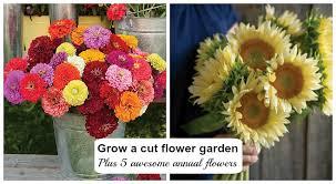 how to plant grow a cut flower garden