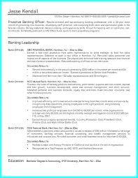 Credit Card Processor Sample Resume Podarki Co