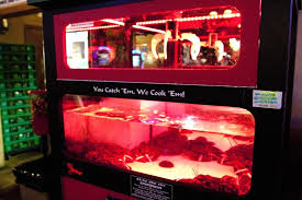 Lobster Vending Machine Enchanting New Game Gaining Attention Offers Live Lobsters As A Prize MPR News