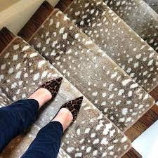 antelope print carpet rugs spot stairs photo by the