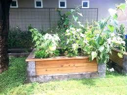 cinder block garden bed raised