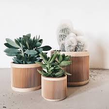 Succulent Pot Design Natural Wood Planters Planters Japan Indoor Planter Minimum Design