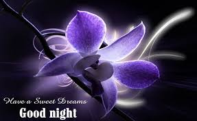 have a sweet dream good night