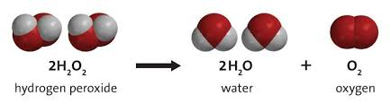 the chemical equation for the