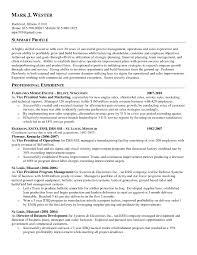 loan officer resume description essays on cat population custom  loan officer resume description essays on cat population custom summary examples for resume